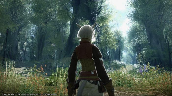 Cận cảnh về Final Fantasy XIV: A Realm Reborn - Ảnh 28