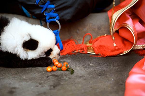 Nụ cười mê người của đệ tử Đường Môn trong VLTK 3