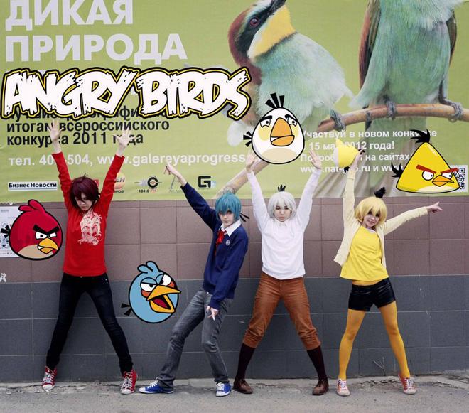 """Bầy """"chim điên"""" xuất hiện ngoài đời thực tại Nga - Ảnh 6"""