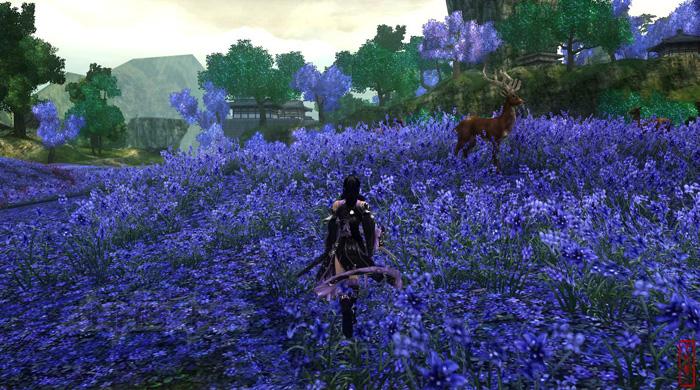 Thiếu nữ và phong cảnh tuyệt đẹp trong VLTK 3 - Ảnh 21